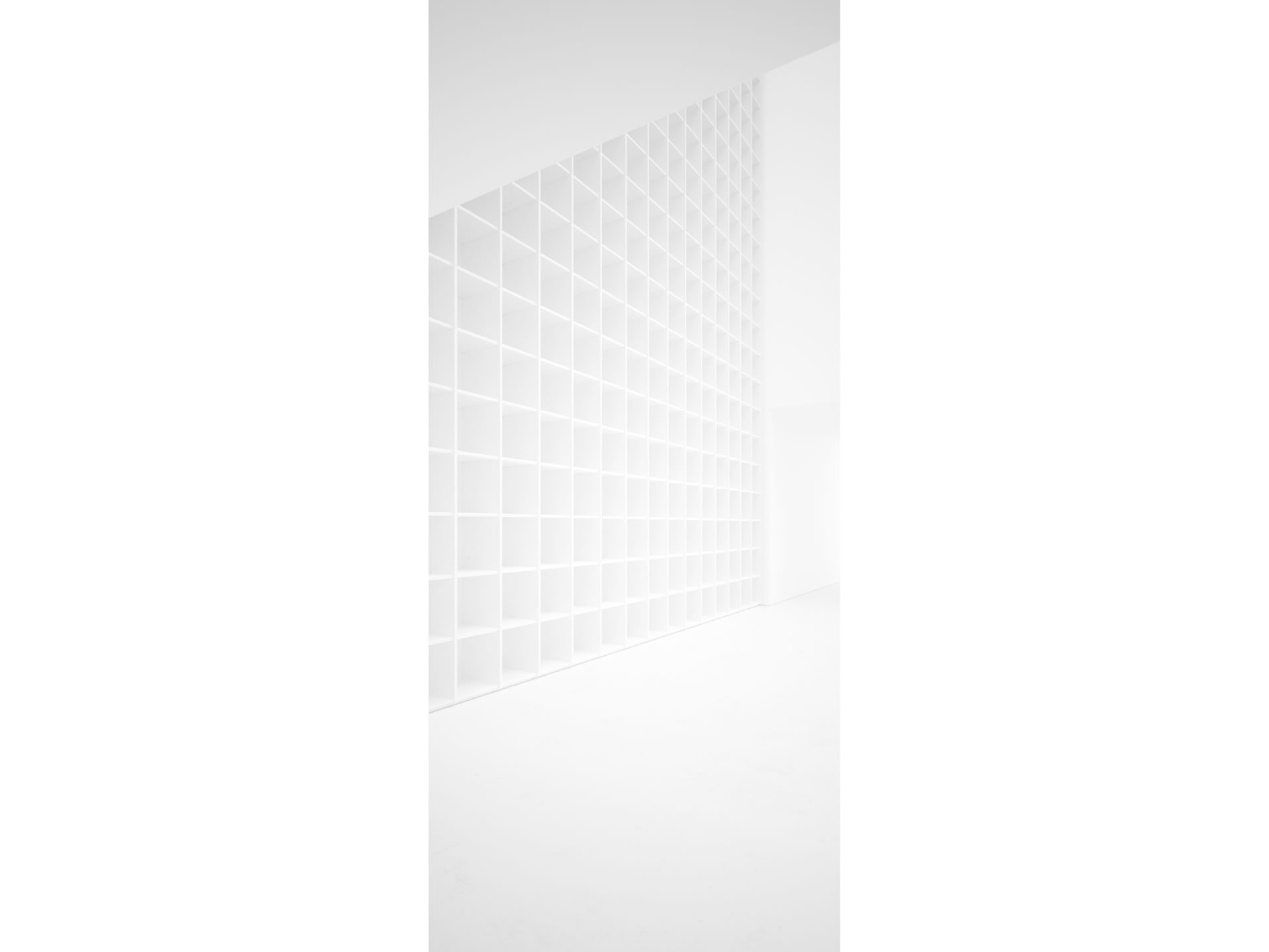 FELIX SCHWAKE SHELVE III Cultivate White Shelve Ceiling High Custom Built