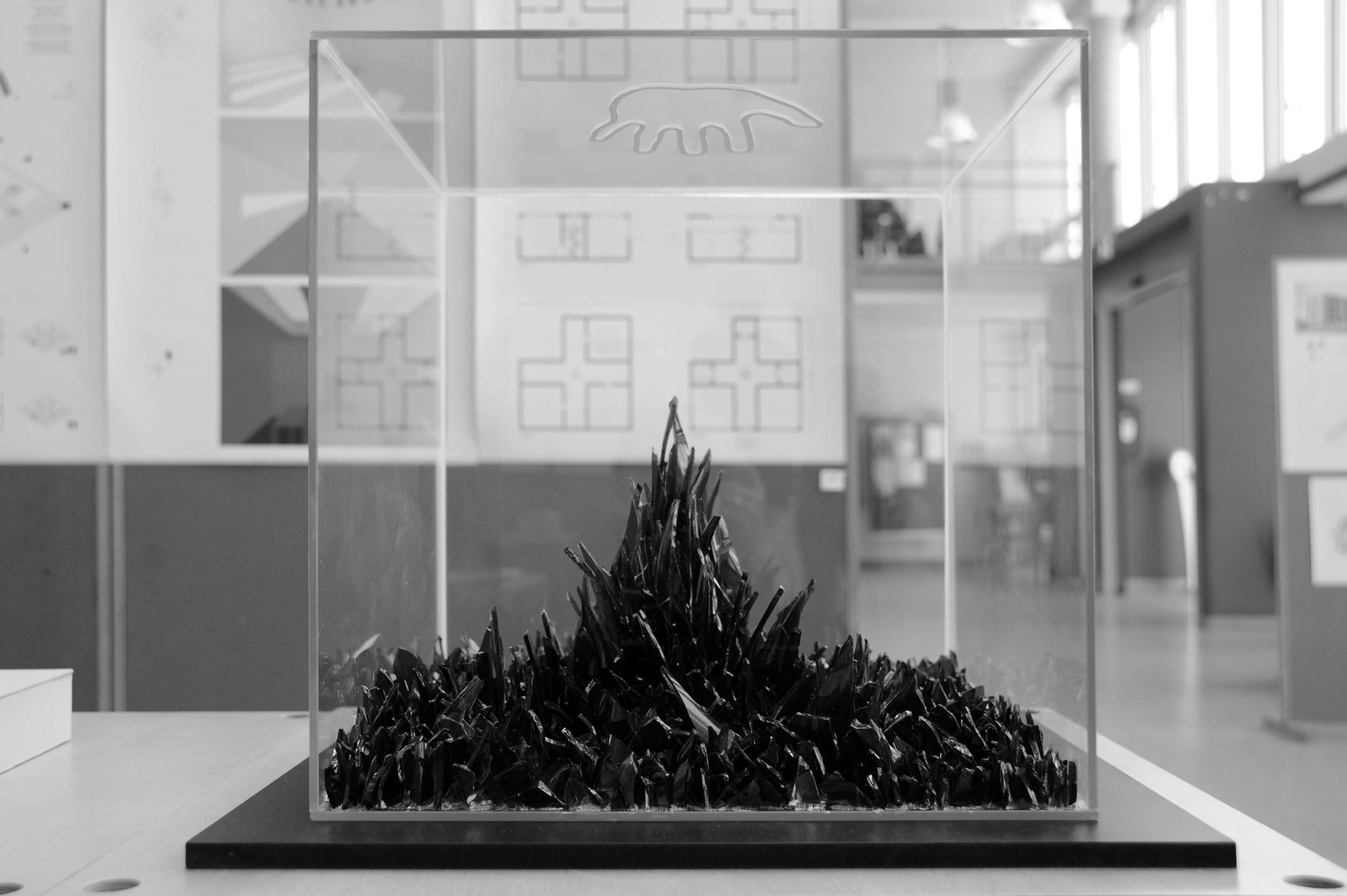 Competition Art Architecture Felix Schwake